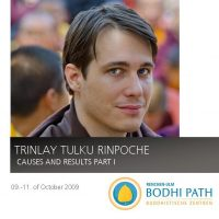 Trinle_Rinpoche_Causes_and_Results_Part1
