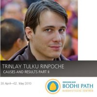 Trinle_Rinpoche_Causes_and_Results_Part2