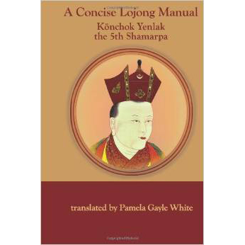 A-concise-lojong-manual