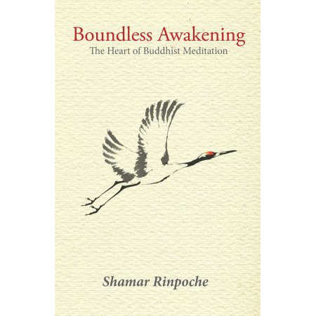 Boundless-Awakening-straight-cover-e1493479208387 (1)