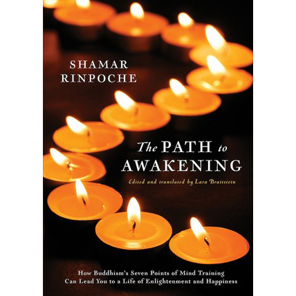 Path-to-Awakening-front-cover